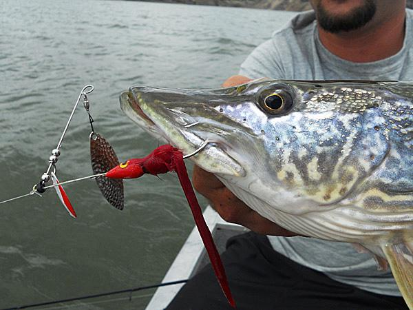 как рыбачить спиннербейтом